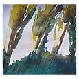 Mount Royal Trees, Outremont side, 8x8, watercolour, Sep 26/10