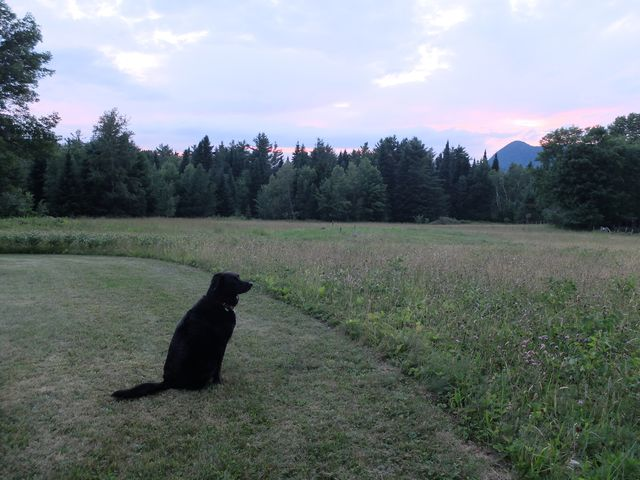 July 8, 2014, Eastern Townships