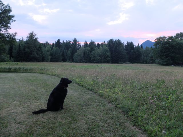 July 7, 2014, Eastern Townships