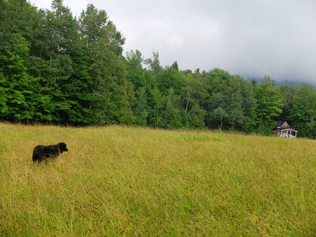 July 22, 2014, Eastern Townships