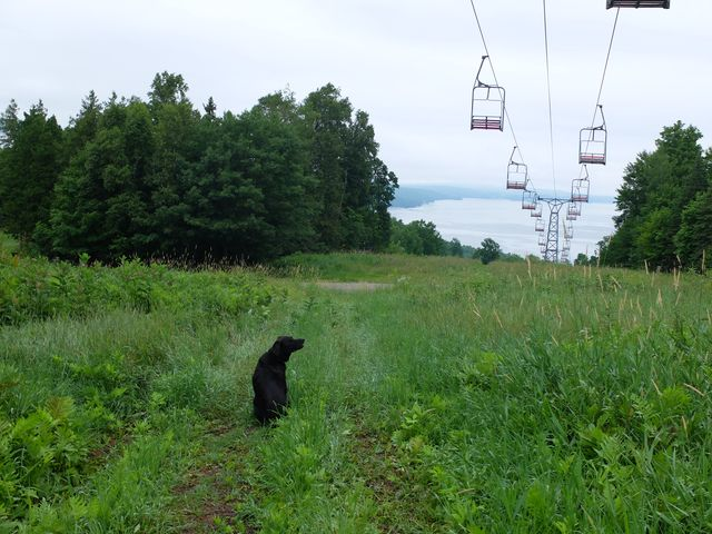 July 27, 2014, Eastern Townships